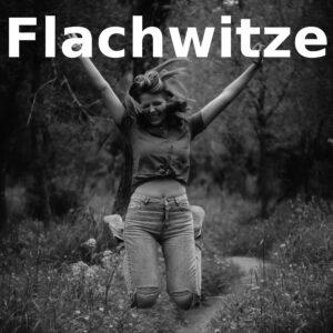 Flachwitze - party-sprüche.de - Witze die einfach flach sind - Logo für Flachwitze