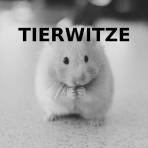 Tierwitze - Logo - Foto - party-sprüche.de
